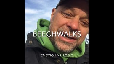 Emotion vs Logic